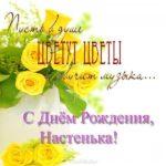 Поздравление с днем рождения Анастасии открытка скачать бесплатно на сайте otkrytkivsem.ru