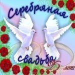 Поздравление с серебряной свадьбой открытка скачать бесплатно на сайте otkrytkivsem.ru