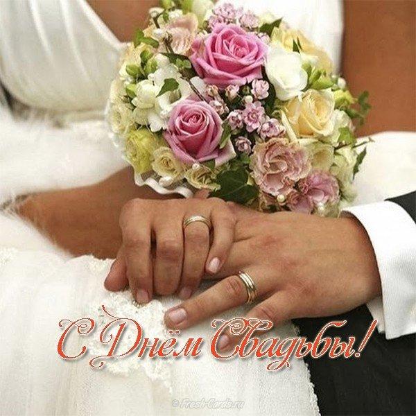 pozdravlenie so svadboy otkrytka skachat