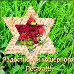 Праздник песах картинка скачать бесплатно на сайте otkrytkivsem.ru