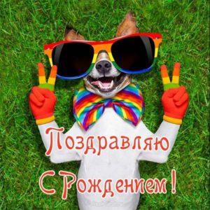 Прикол открытка с рождением скачать бесплатно на сайте otkrytkivsem.ru