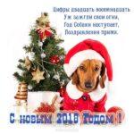 Прикольная открытка к году собаки скачать бесплатно на сайте otkrytkivsem.ru