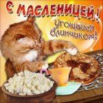 Прикольная открытка масленица скачать бесплатно на сайте otkrytkivsem.ru