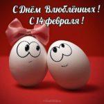 Прикольная открытка с 14 февраля скачать бесплатно на сайте otkrytkivsem.ru