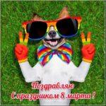 Прикольная открытка с 8 марта скачать бесплатно на сайте otkrytkivsem.ru