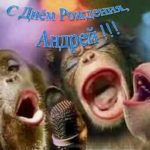 Прикольная открытка с днем рождения Андрей скачать бесплатно на сайте otkrytkivsem.ru