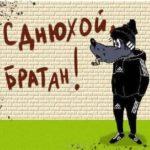 Прикольная открытка с днем рождения братишка скачать бесплатно на сайте otkrytkivsem.ru