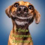 Прикольная открытка с днём рождения друга скачать бесплатно на сайте otkrytkivsem.ru