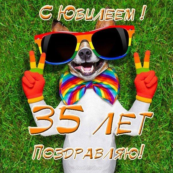 Прикольная открытка с юбилеем 35 лет скачать бесплатно на сайте otkrytkivsem.ru