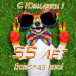 Прикольная открытка с юбилеем 55 лет женщине скачать бесплатно на сайте otkrytkivsem.ru