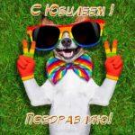Прикольная открытка с юбилеем женщине скачать бесплатно на сайте otkrytkivsem.ru