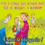 Прикольное поздравление со свадьбой в картинках скачать бесплатно на сайте otkrytkivsem.ru