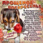 Прощеное воскресенье юмор картинка скачать бесплатно на сайте otkrytkivsem.ru
