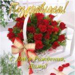С днем рождения Дима красивая открытка скачать бесплатно на сайте otkrytkivsem.ru