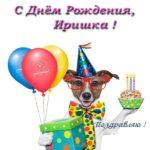С днем рождения Иришка прикольная открытка скачать бесплатно на сайте otkrytkivsem.ru