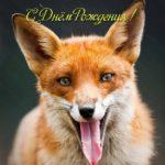С днем рождения лисичка открытка скачать бесплатно на сайте otkrytkivsem.ru