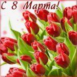 Шаблон открытки электронный на 8 марта скачать бесплатно на сайте otkrytkivsem.ru