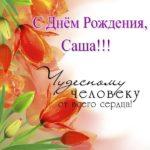 Скачать открытку с днем рождения Саша скачать бесплатно на сайте otkrytkivsem.ru