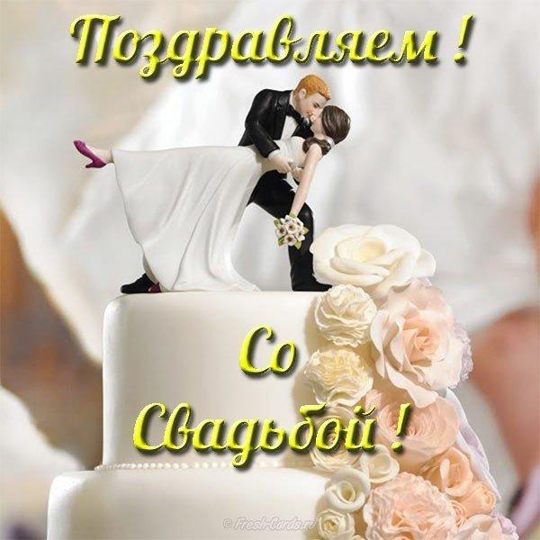 Фото свадебных открыток шуточных, анимашки птицы картинка