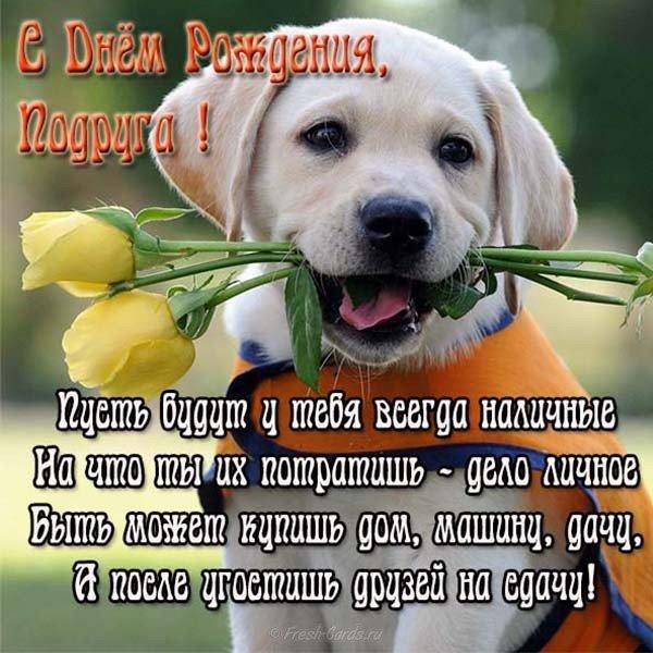 Смешная открытка на день рождения подруге скачать бесплатно на сайте otkrytkivsem.ru