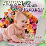 Смешная открытка с днем рождения девушке скачать бесплатно на сайте otkrytkivsem.ru