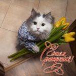 Смешная открытка с днем рождения женщине юморная скачать бесплатно на сайте otkrytkivsem.ru