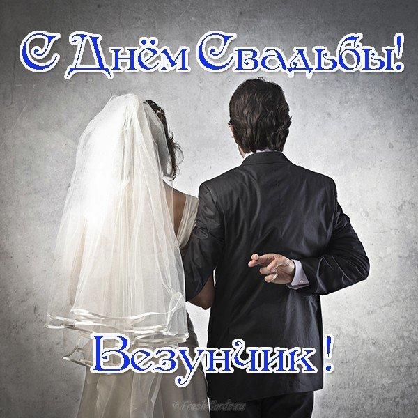 svadba otkrytka kartinka prikolnaya