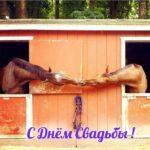 Свадебная прикольная открытка картинка скачать бесплатно на сайте otkrytkivsem.ru