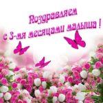 Три месяца ребенку открытка скачать бесплатно на сайте otkrytkivsem.ru