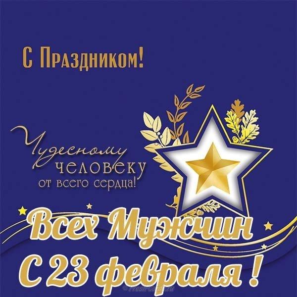 vsekh muzhchin s fevralya otkrytka