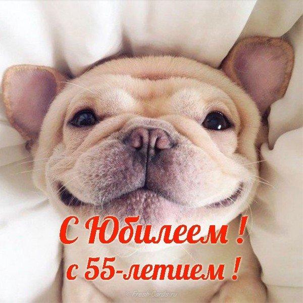 Юбилей 55 открытка скачать бесплатно на сайте otkrytkivsem.ru
