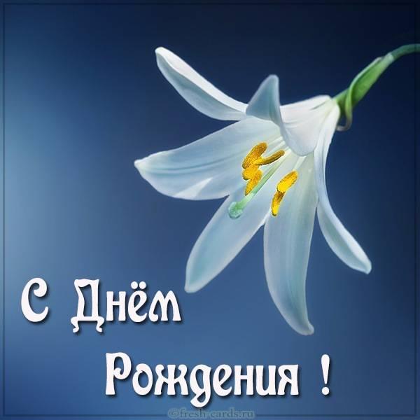 Открытка с днем рождения с красивыми цветком