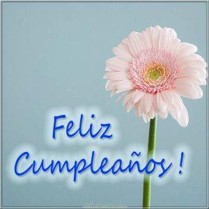 Картинка на день рождения на Испанском