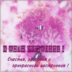 Красивая картинка с днем рождения с цветком