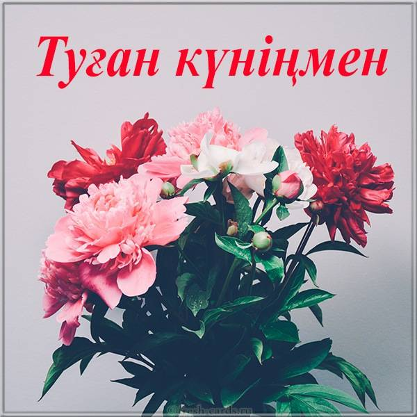 Картинка с днем рождения Казахская