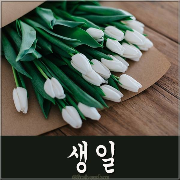 Корейская открытка на день рождения