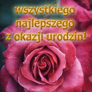 Польская открытка на день рождения