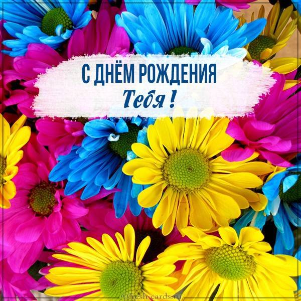 Картинка с днем рождения с яркими цветами