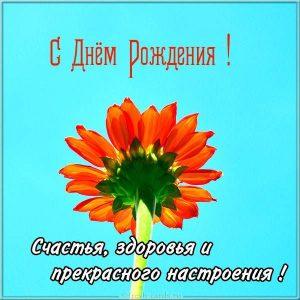 Открытка на днюху с цветком