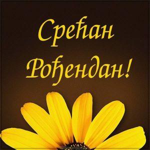 Открытка на день рождения на Сербском языке
