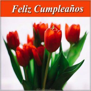Открытка с поздравление дня рождения на Испанском