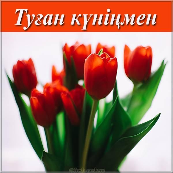 Открытка с поздравлением дня рождения по Казахски