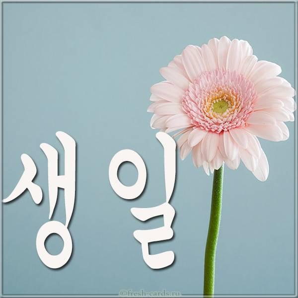 Открытка на день рождения на Корейском языке