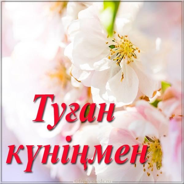 Открытка с днем рождения по Казахски