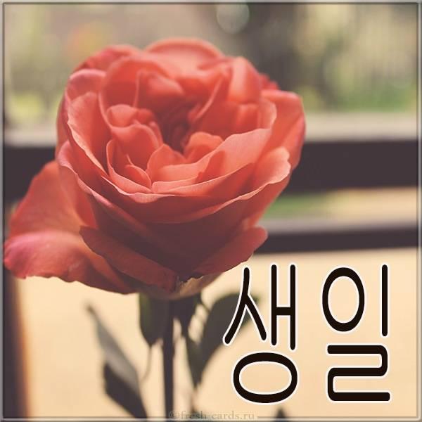 Картинка на день рождения на Корейском языке