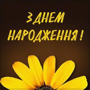 Картинка девушке с днем рождения на Украинском языке