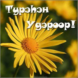 Картинка с цветами на день рождения на Бурятском языке