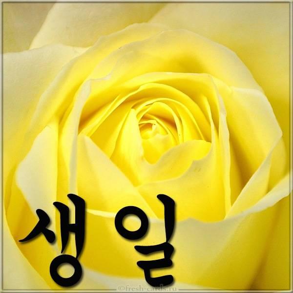 Открытка с днем рождения с надписью на Корейском