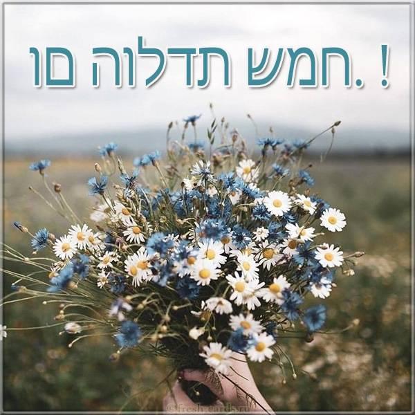 Картинка по Еврейски с днем рождения