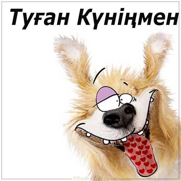 Прикольная открытка с днем рождения на Казахском языке